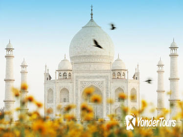 09 Days Golden triangle tour with golden temple Amritsar