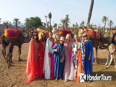 1 Hour of Camel Ride in PalmGrove to see Sunset