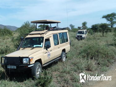 11 days kenya and tanzania safaris from Nairobi or mombasa