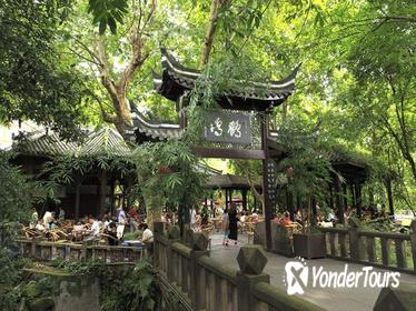1-Day Panda Breeding Center plus Chengdu City Tour