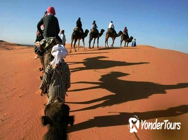 2 DAYS PRIVATE TOUR TO ZAGORA DESERT FROM MARRAKECH