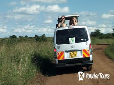 2 days Tsavo East and West National parks safaris from Mombasa