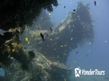 2 PADI Certified Dives at Tulamben from Bali