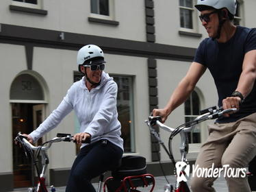 2.5-Hour Auckland Neighborhoods Electric Bike Small-Group Tour