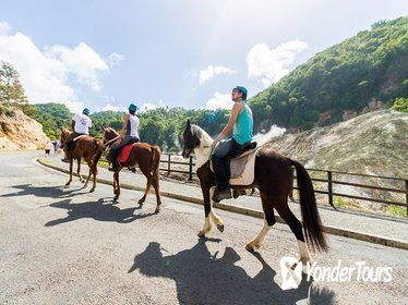 2.5-hour Horseback Ride and Volcano Tour in St. Lucia