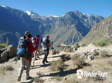 2-Day Custom Colca Canyon Trek from Arequipa