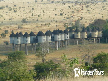 2-Day Safari in Taita Hills from Mombasa