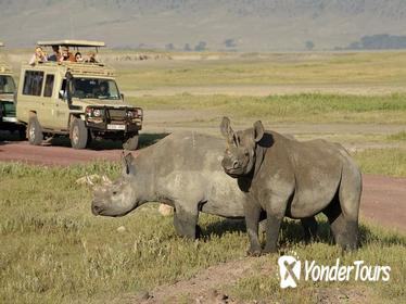 2-Day Short Safari to Tarangire and Ngorongoro Crater