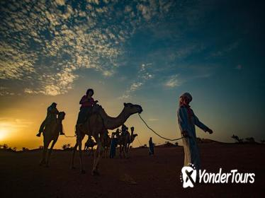 2-Day Zagora Tour from Marrakech Including the Atlas Mountains, Camel Trek and Desert Camp