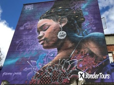 2-Hour Graffiti Walking-Tour in La Candelaria -Historical Center- Bogota