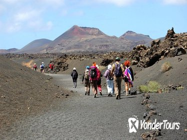 3 Volcanoes Guided Walking Tour from Lanzarote