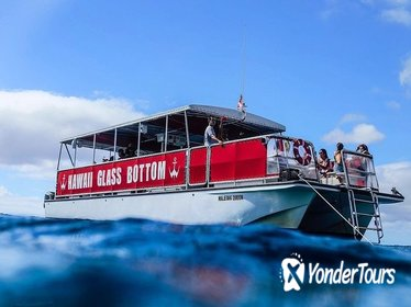 3:00 PM Glass Bottom Boat Cruise