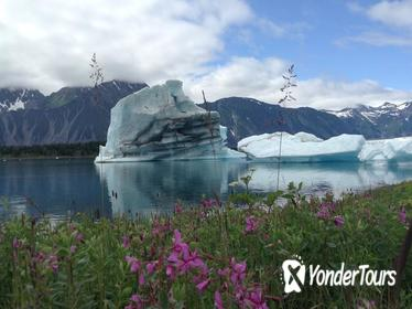 30 Minute Glacier Expedition Flight Tour