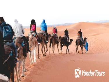3-day excursion to Merzouga from Marrakech including the Dades valley and camel trek in Erg Chebbi