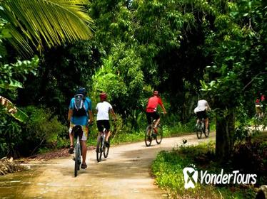 3-Day Hua Hin Bike Tour from Bangkok
