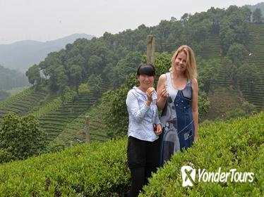 3-Day Private Tour including Shanghai, Suzhou, Hangzhou