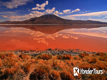 3-Day Salar de Uyuni and Laguna de Colores from Uyuni