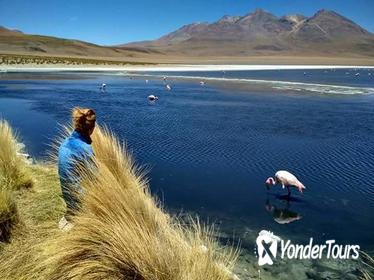 3-Day, 2-Night Uyuni Salt Flats with English Guide, Shared Tour from Uyuni