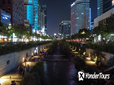 4-Hour Leisure Night and Street Food Tasting Tour in Seoul