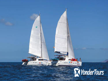 4-Hour Sailing Tour of Lobos Island from Fuerteventura