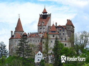 4x4 Tour and Visit of Bran Castle and The Bear Reservation