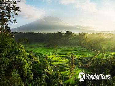 5 Days 4 Nights East Bali Delights (Standard)