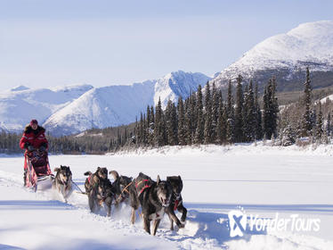 5-Day Active Winter Adventure in Yukon