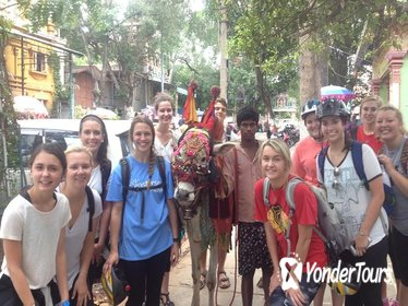 5-Hour South Bangalore Small-Group Bike Tour with Breakfast