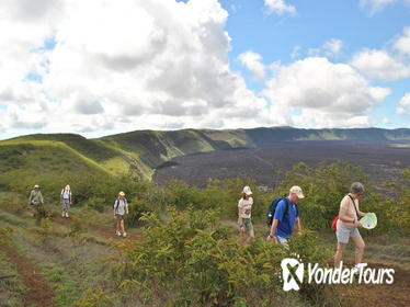 6-Day Darwin's Footprints Land-Based Tour of the Galapagos Islands in Ecuador