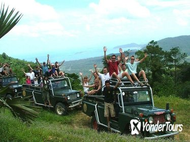 7-Hour 4WD Wild Jungle Safari Tour Including Lunch