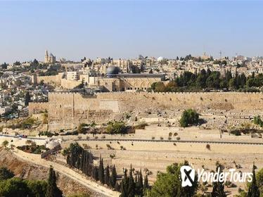 8-Night Israel, Jordan and Egypt Tour from Tel Aviv