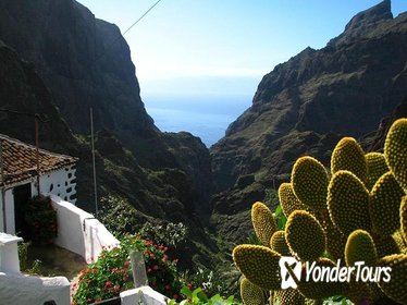 9 hour Trekking Tour of Masca Village in Tenerife for Small Group with Guide