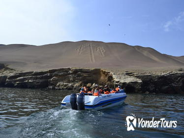 All Inclusive Paracas National Reserve and Ballestas Islands from Lima