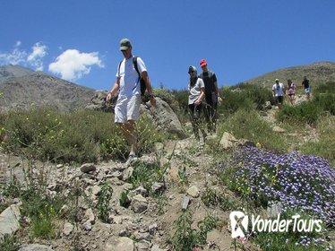 Andes Day Hike & Artisan Village