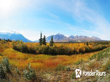 Arctic Day: Kluane National Park Tour