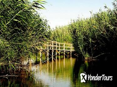 Azraq Wetland Private Half Day Tour from Amman
