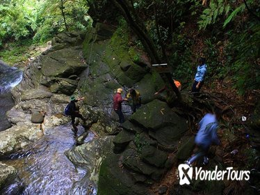 Bach Ma national park trekking 2D1N from Danang
