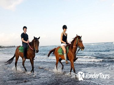 Bali Beach Horse Riding with 2 Hours Spa Experience