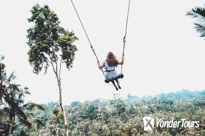 Bali Swing And Ubud Highlight Tour