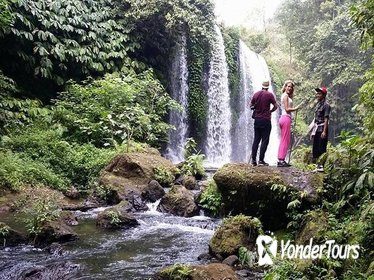 Banyumala Waterfall Trekking,Jungle Trekking and The Real Coffee Plantation