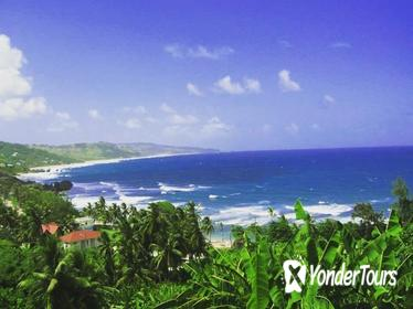 Barbados Shore Excursion: 360 Island Tour