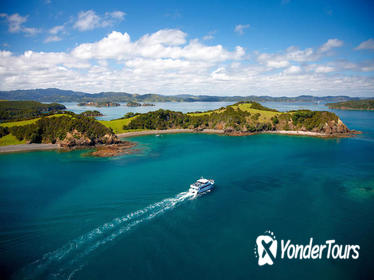 Bay of Islands Transfer Pass from Auckland