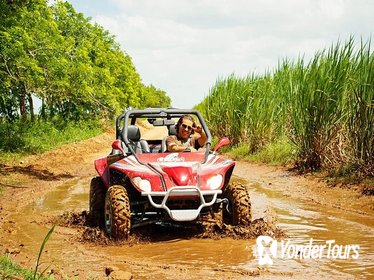 Bayahibe Racing Buggy