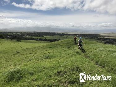 Big Island Mountain Biking on Anna Ranch
