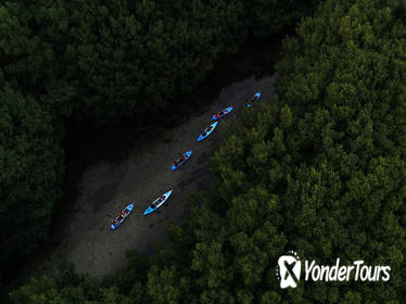 Bioluminescent Bay Kayak Adventure Tour from San Juan