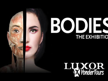 Bodies The Exhibition at the Luxor Hotel and Casino