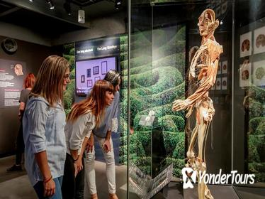 Body Worlds Amsterdam 'The Happiness Project' Skip-the-Line Ticket