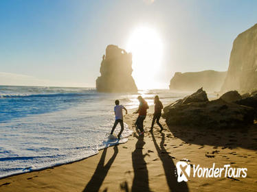 Boutique 12 Apostles Great Ocean Road Walk with Gourmet Lunch a Full-Day Guided Touring Experience