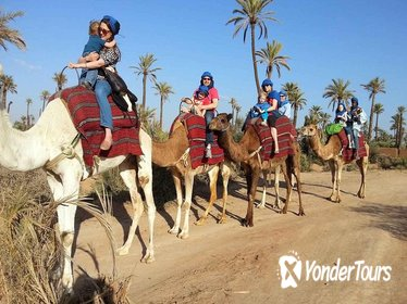 Camel ride in Marrakech palm grove including a visit to berber family