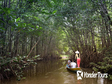 Can Gio Biosphere Reserve Tour by Luxury Speedboat